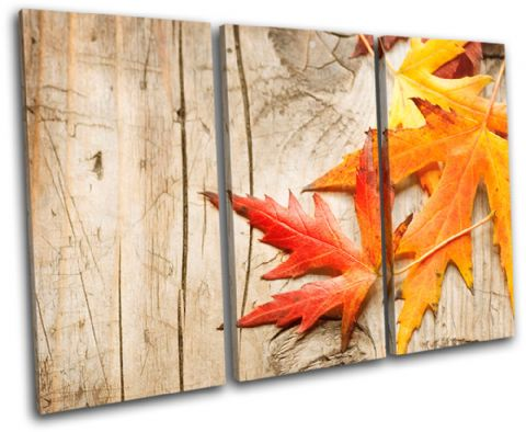 Autumn Leaves Floral - 13-1064(00B)-TR32-LO